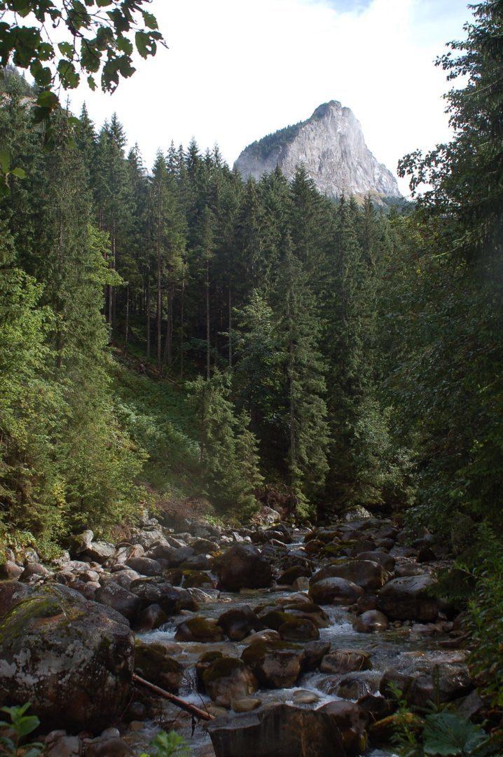 Pod Muráňom v Javorovej doline (autor: Lenka Burdová)
