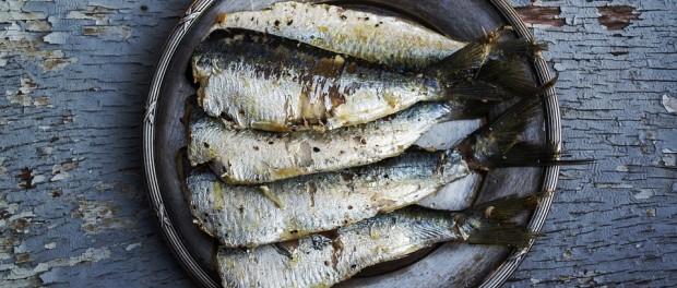 sardines-1489630_960_720